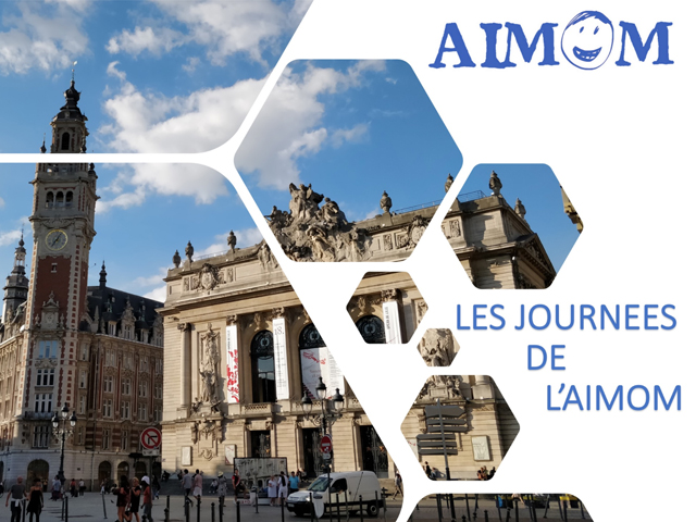 aimom lille perspectives et organisation
